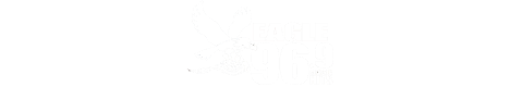 96.9 The Eagle